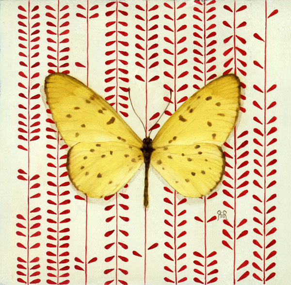 spotted_lepidoptera